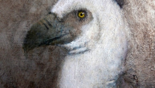 TheVulture(face)