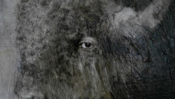 Buffalo#3 (detail)