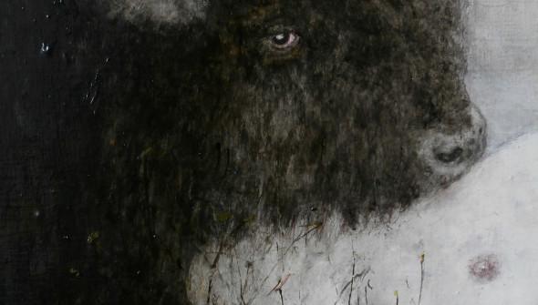 Buffalo#4 (detail)
